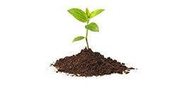 Rastlina – dokumenty k životnému poisteniu