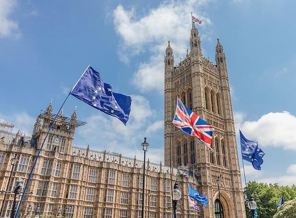 britský parlament s vlajkami